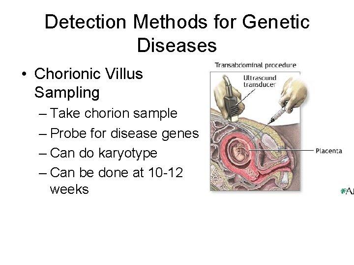 Detection Methods for Genetic Diseases • Chorionic Villus Sampling – Take chorion sample –