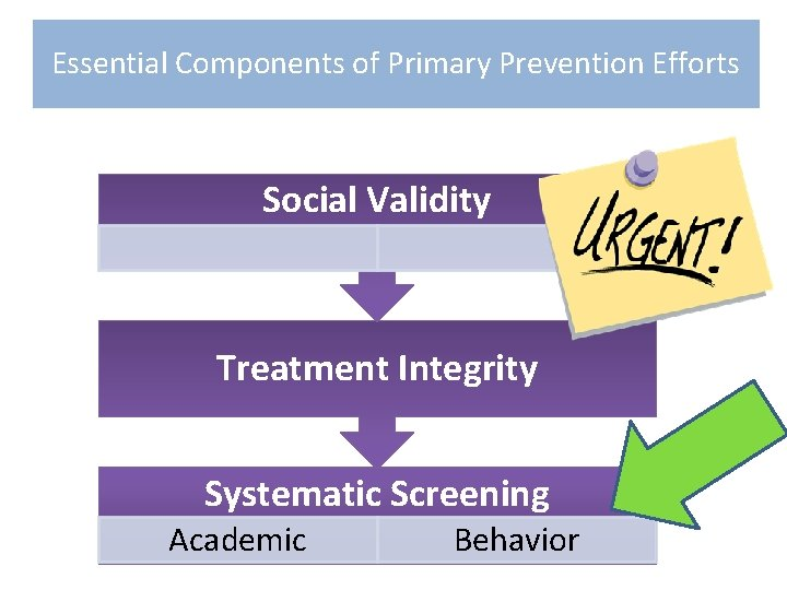 Essential Components of Primary Prevention Efforts Social Validity Treatment Integrity Systematic Screening Academic Behavior