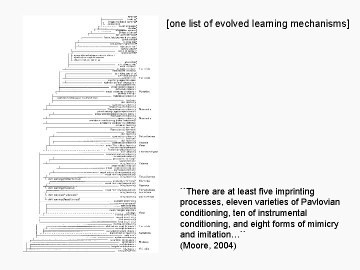 [one list of evolved learning mechanisms] ``There at least five imprinting processes, eleven varieties
