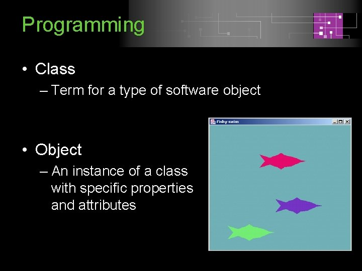 Programming • Class – Term for a type of software object • Object –