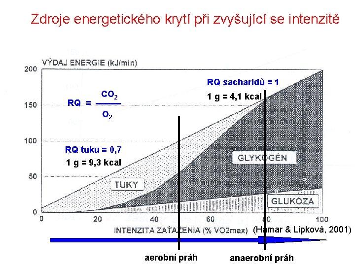 Zdroje energetického krytí při zvyšující se intenzitě RQ sacharidů = 1 RQ = CO