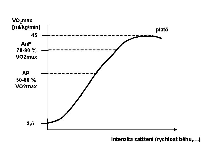 VO 2 max [ml/kg/min] 45 plató An. P 70 -90 % VO 2 max