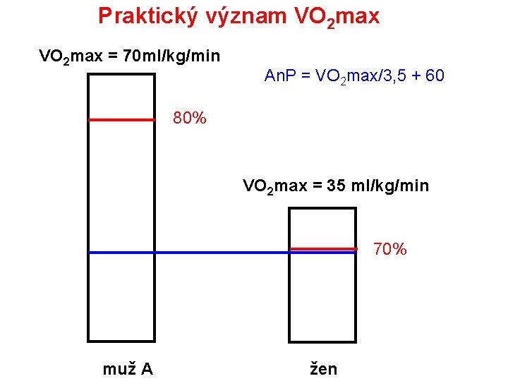 Praktický význam VO 2 max = 70 ml/kg/min An. P = VO 2 max/3,