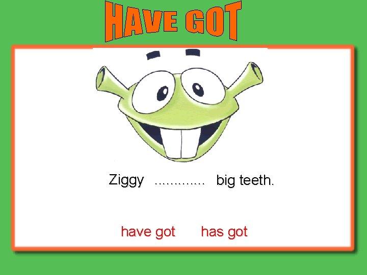 Ziggy. . . big teeth. have got has got