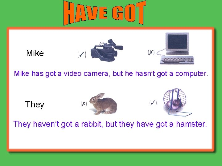 Mike has got a video camera, but he hasn't got a computer. They haven't