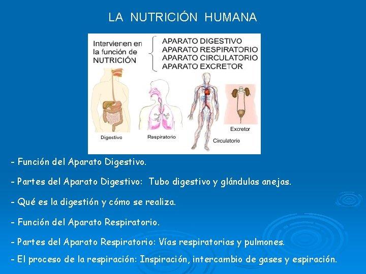 LA NUTRICIÓN HUMANA - Función del Aparato Digestivo. - Partes del Aparato Digestivo: Tubo