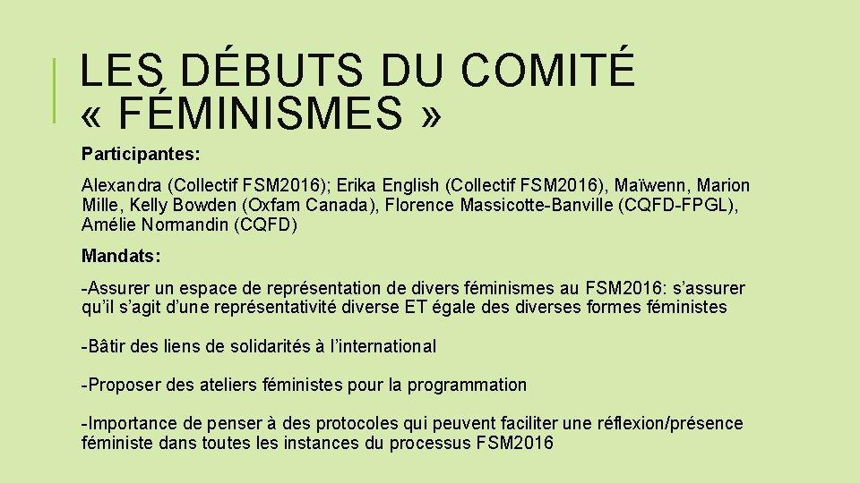 LES DÉBUTS DU COMITÉ « FÉMINISMES » Participantes: Alexandra (Collectif FSM 2016); Erika English