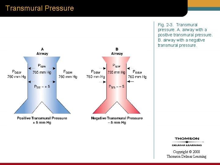 Transmural Pressure Fig. 2 -3. Transmural pressure. A. airway with a positive transmural pressure.