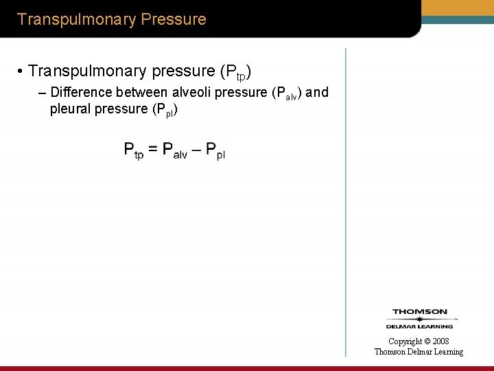 Transpulmonary Pressure • Transpulmonary pressure (Ptp) – Difference between alveoli pressure (Palv) and pleural