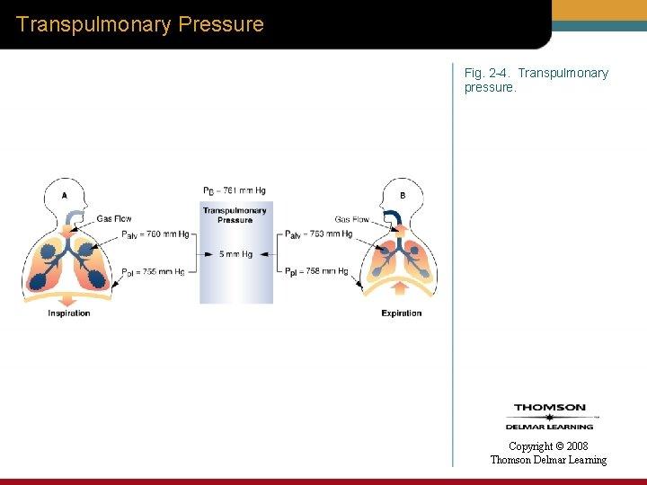 Transpulmonary Pressure Fig. 2 -4. Transpulmonary pressure. Copyright © 2008 Thomson Delmar Learning