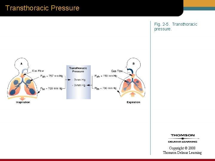 Transthoracic Pressure Fig. 2 -5. Transthoracic pressure. Copyright © 2008 Thomson Delmar Learning
