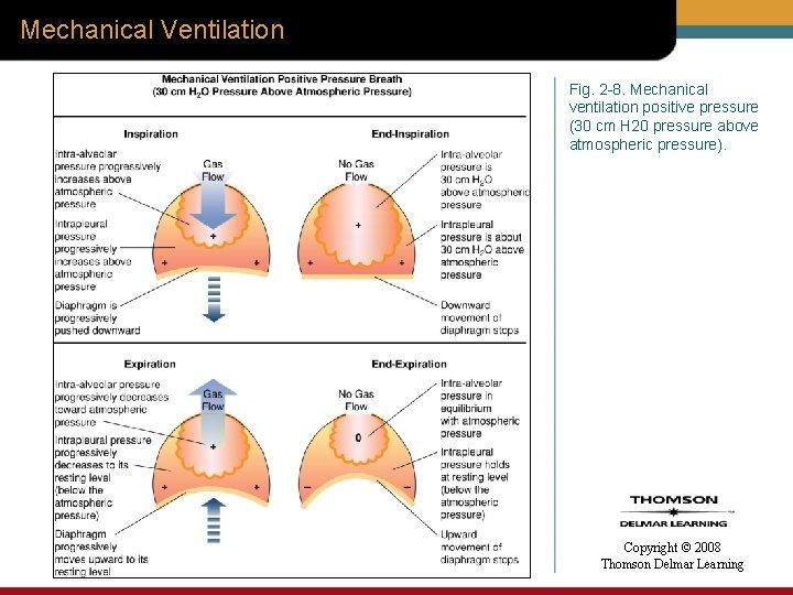 Mechanical Ventilation Fig. 2 -8. Mechanical ventilation positive pressure (30 cm H 20 pressure
