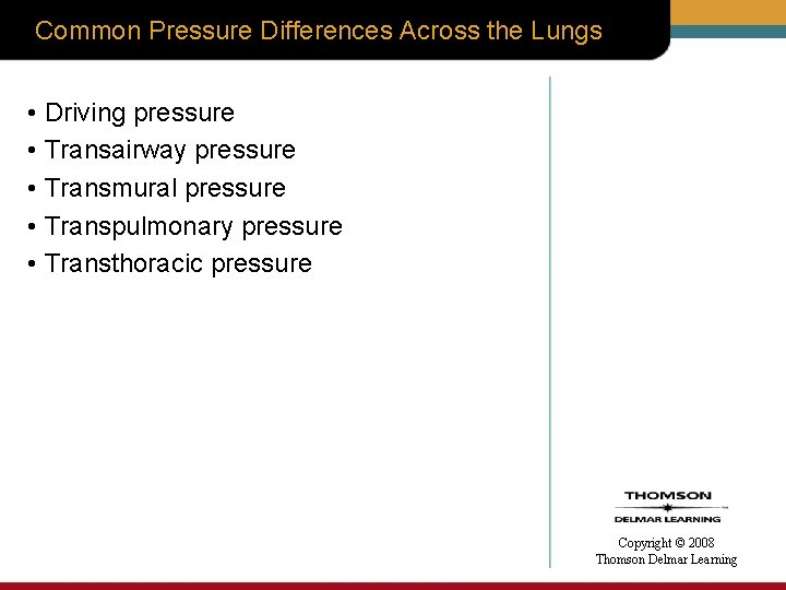Common Pressure Differences Across the Lungs • Driving pressure • Transairway pressure • Transmural