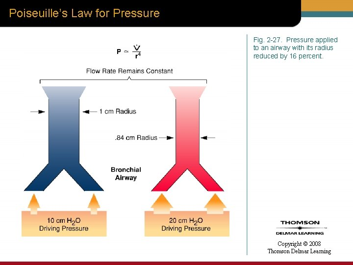 Poiseuille's Law for Pressure Fig. 2 -27. Pressure applied to an airway with its
