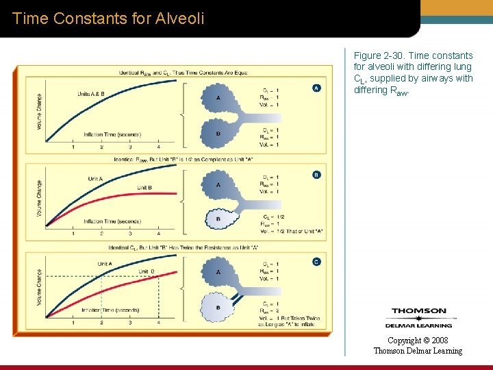 Time Constants for Alveoli Figure 2 -30. Time constants for alveoli with differing lung