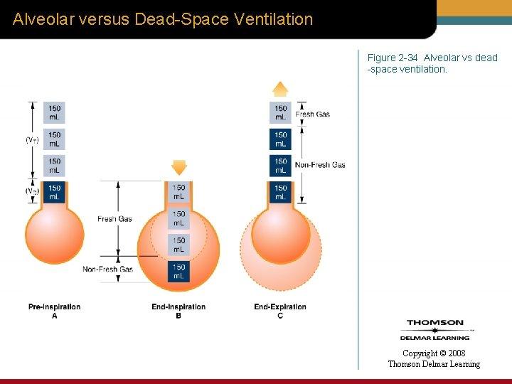 Alveolar versus Dead-Space Ventilation Figure 2 -34 Alveolar vs dead -space ventilation. Copyright ©