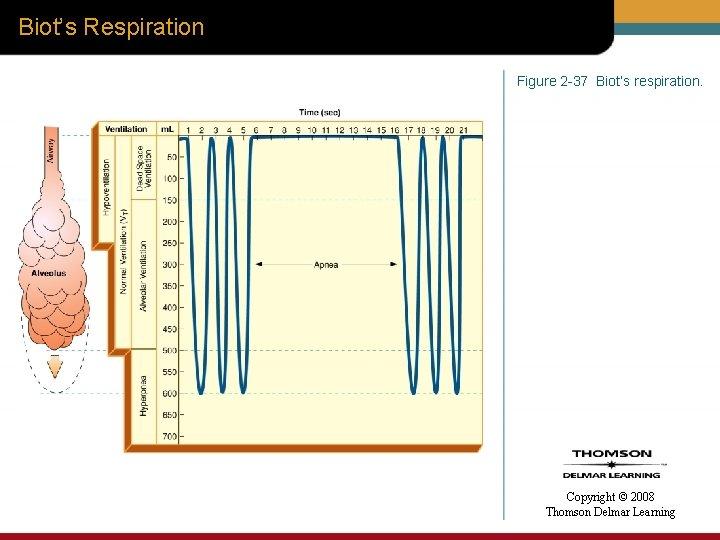 Biot's Respiration Figure 2 -37 Biot's respiration. Copyright © 2008 Thomson Delmar Learning