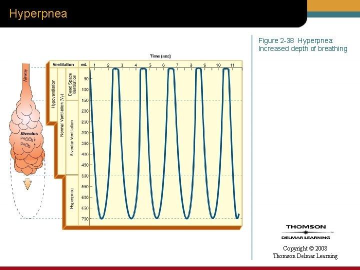 Hyperpnea Figure 2 -38 Hyperpnea: Increased depth of breathing Copyright © 2008 Thomson Delmar
