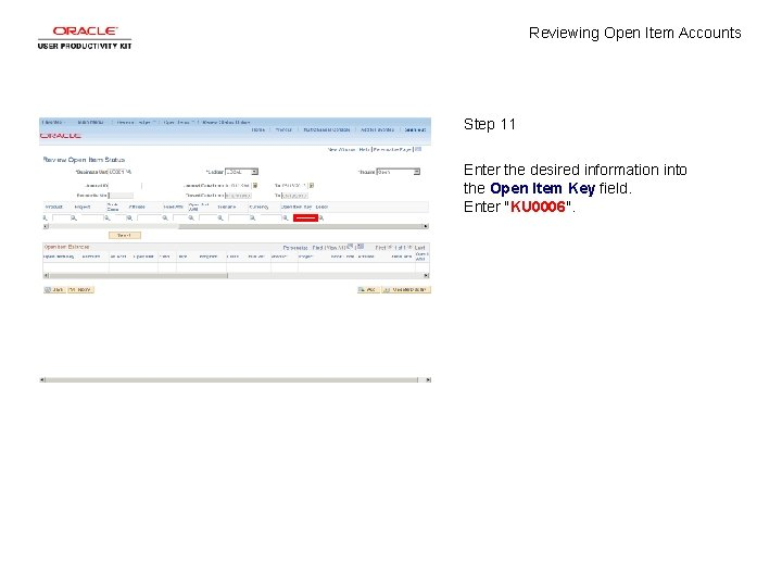 Reviewing Open Item Accounts Step 11 Enter the desired information into the Open Item