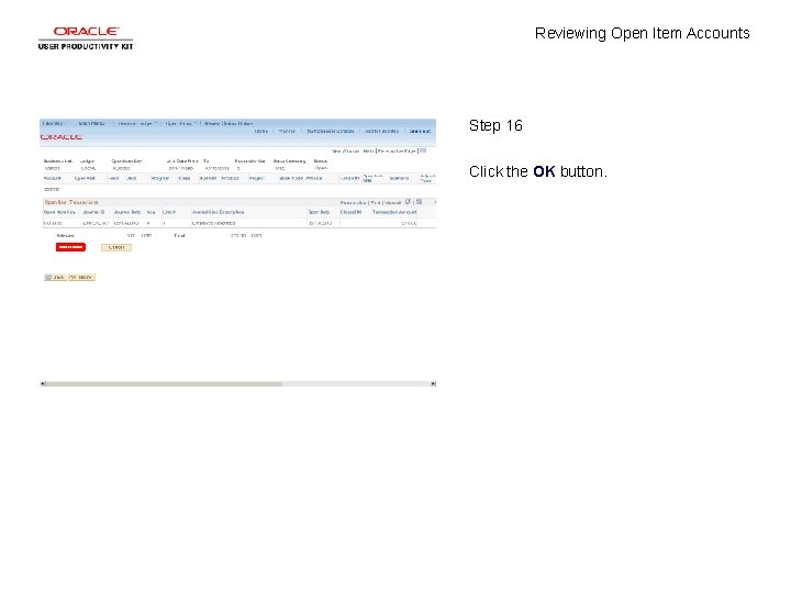 Reviewing Open Item Accounts Step 16 Click the OK button.