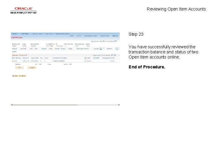 Reviewing Open Item Accounts Step 23 You have successfully reviewed the transaction balance and