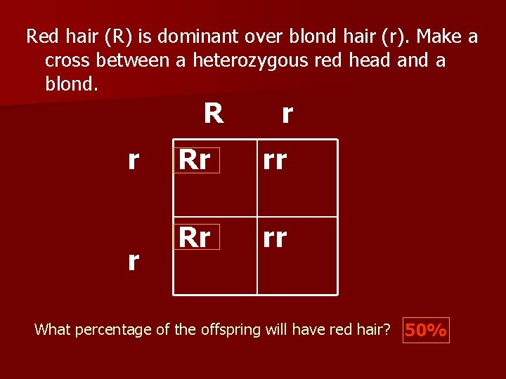 Red hair (R) is dominant over blond hair (r). Make a cross between a