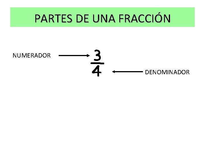 PARTES DE UNA FRACCIÓN NUMERADOR ¾ DENOMINADOR