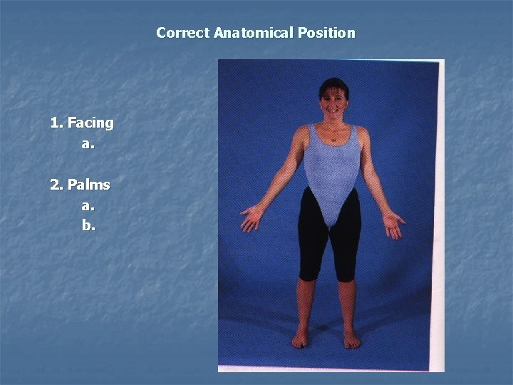 Correct Anatomical Position 1. Facing a. 2. Palms a. b.
