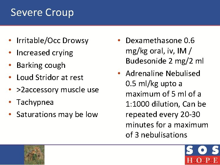 Severe Croup • • Irritable/Occ Drowsy Increased crying Barking cough Loud Stridor at rest