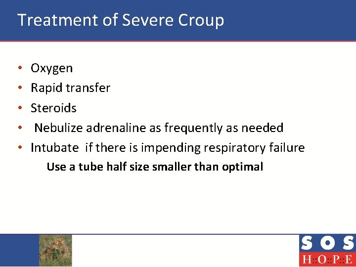 Treatment of Severe Croup • • • Oxygen Rapid transfer Steroids Nebulize adrenaline as