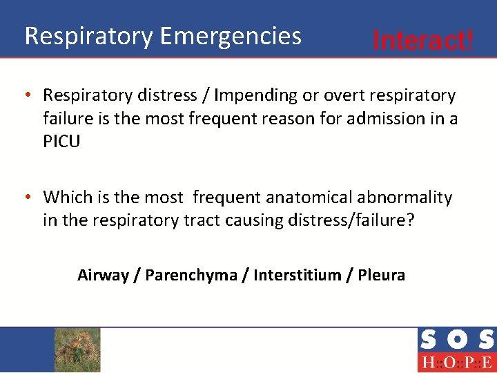 Respiratory Emergencies Interact! • Respiratory distress / Impending or overt respiratory failure is the