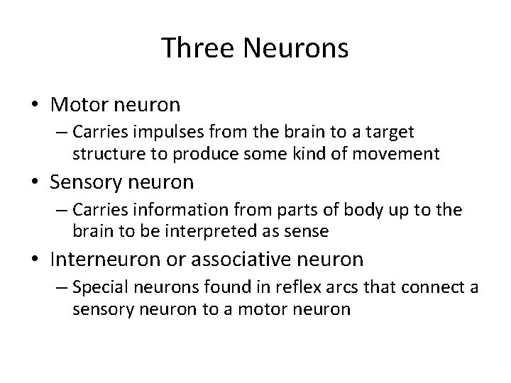Three Neurons • Motor neuron – Carries impulses from the brain to a target