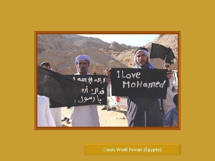 Oasis Wadi Feiran (Égypte)