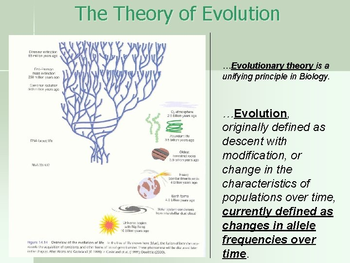The Theory of Evolution …Evolutionary theory is a unifying principle in Biology. …Evolution, originally
