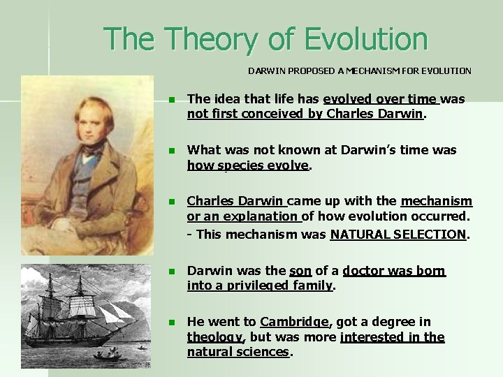The Theory of Evolution DARWIN PROPOSED A MECHANISM FOR EVOLUTION n The idea that