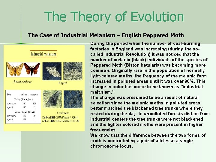The Theory of Evolution The Case of Industrial Melanism – English Peppered Moth During