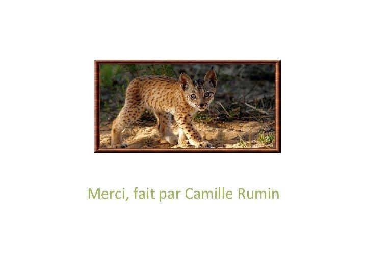 Merci, fait par Camille Rumin