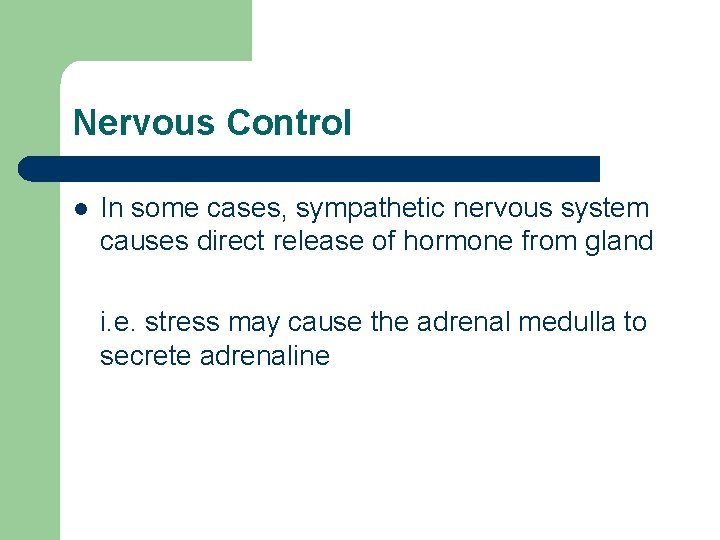 Nervous Control l In some cases, sympathetic nervous system causes direct release of hormone