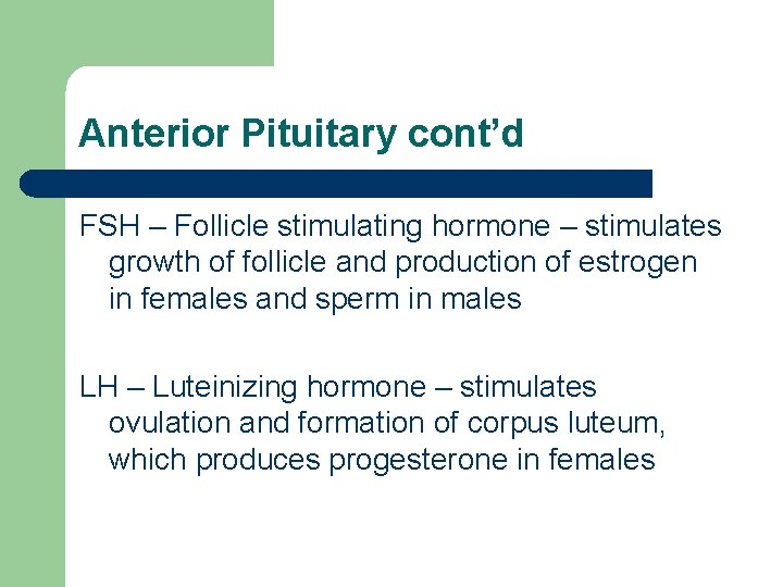 Anterior Pituitary cont'd FSH – Follicle stimulating hormone – stimulates growth of follicle and