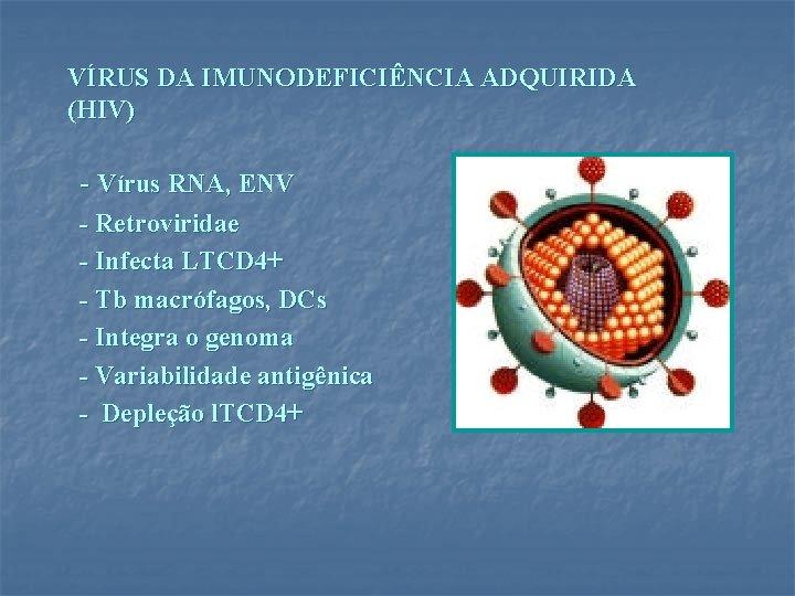 VÍRUS DA IMUNODEFICIÊNCIA ADQUIRIDA (HIV) - Vírus RNA, ENV - Retroviridae - Infecta LTCD