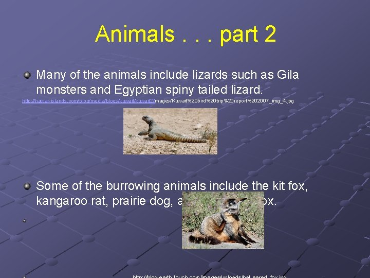 Animals. . . part 2 Many of the animals include lizards such as Gila