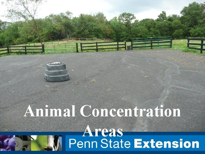 Animal Concentration Areas