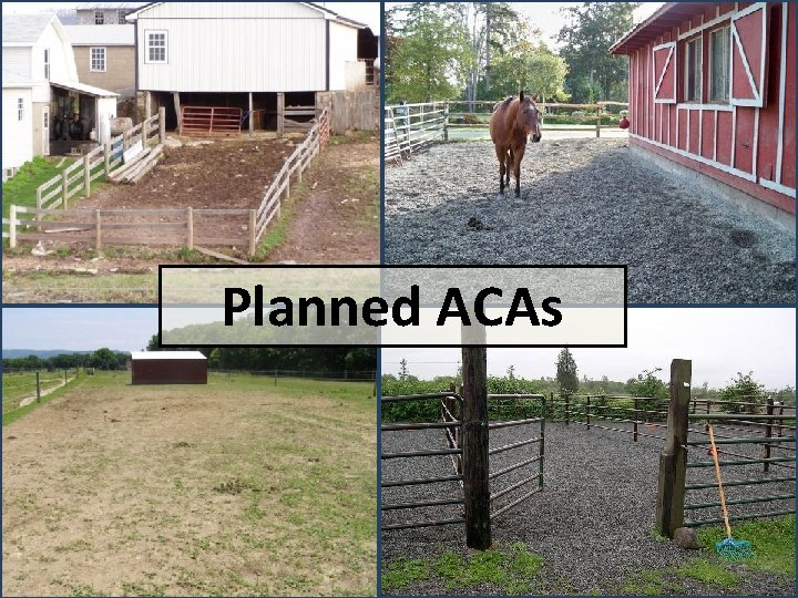 Planned ACAs