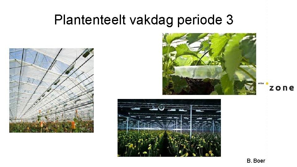 Plantenteelt vakdag periode 3 B. Boer