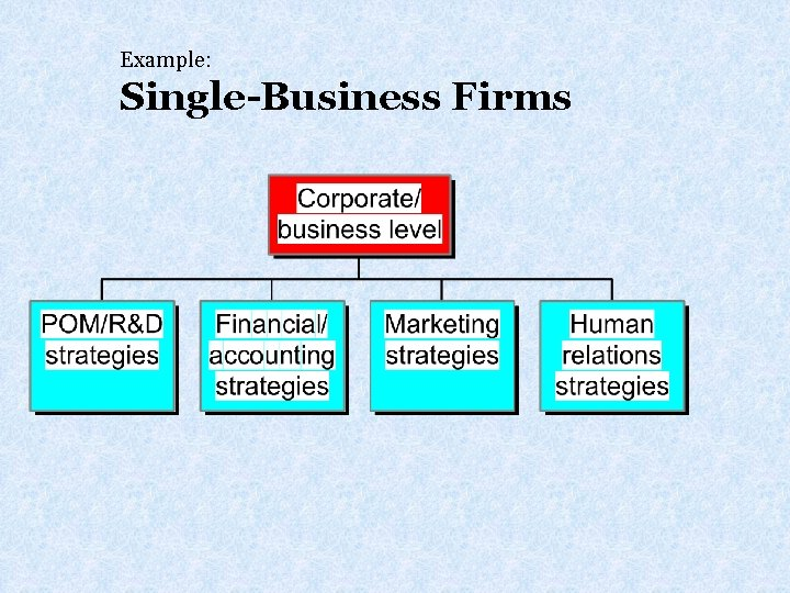 Example: Single-Business Firms