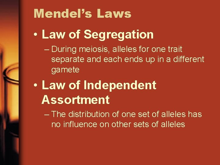 Mendel's Laws • Law of Segregation – During meiosis, alleles for one trait separate
