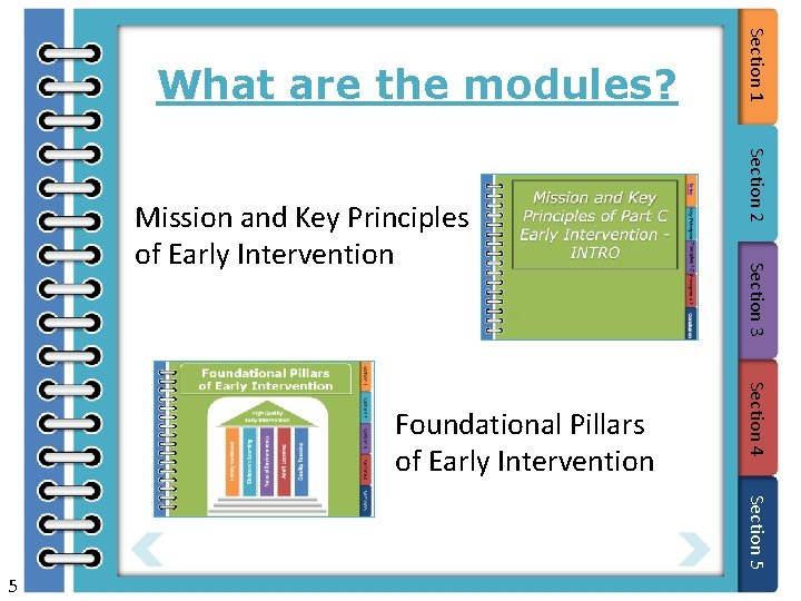 Section 3 Section 4 Foundational Pillars of Early Intervention Section 2 Mission and Key