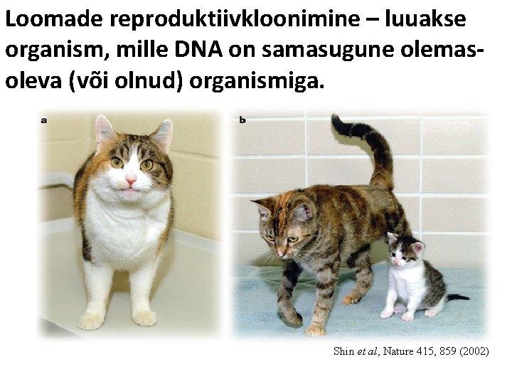 Loomade reproduktiivkloonimine – luuakse organism, mille DNA on samasugune olemasoleva (või olnud) organismiga. Shin