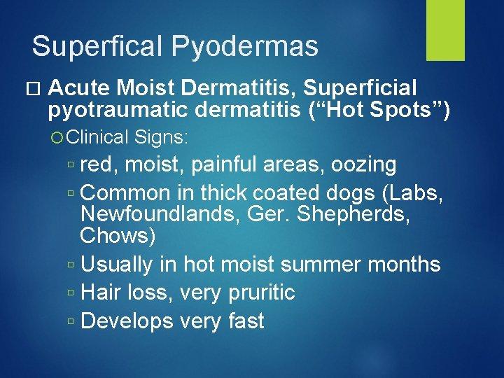 "Superfical Pyodermas Acute Moist Dermatitis, Superficial pyotraumatic dermatitis (""Hot Spots"") Clinical Signs: red, moist,"