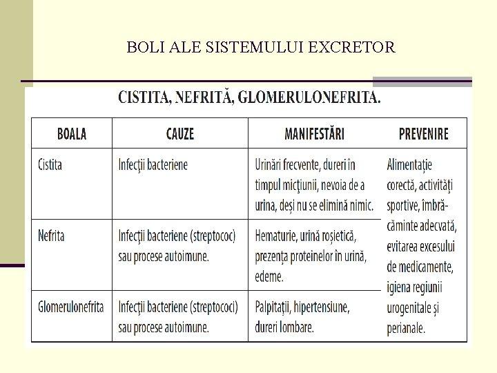 boli ale aparatului excretor)